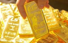 Dừng hoạt động 2 công ty vàng tại Quảng Nam nếu không nộp nợ thuế