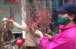 Người Hà Nội chuộng mua đào cúng rằm tháng Giêng