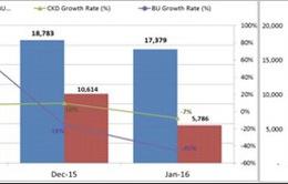 Tháng 1/2016, doanh số bán ô tô giảm 21%