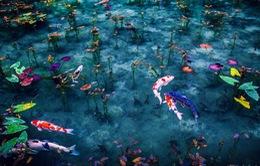 Ngất ngây với khung cảnh nước Nhật mùa mưa đẹp như tranh vẽ