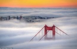 """Hình ảnh sương mù """"nuốt chửng"""" những tòa nhà chọc trời trên thế giới"""