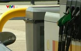 Đồng USD mạnh có thể kéo giá dầu xuống mức 20 USD