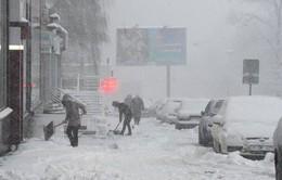 Mùa đông 2016 - Mùa đông sớm nhất trong 137 năm qua ở Moscow