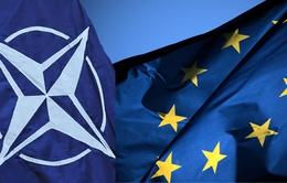 NATO sẵn sàng mở rộng hoạt động hỗ trợ EU trên biển Địa Trung Hải