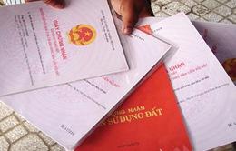 Quảng Nam: Bắt đầu cấp sổ đỏ cho người dân sau phản ánh của VTV