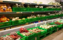 Xuất khẩu rau quả vượt xuất khẩu gạo