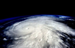 Nhờ Ai là triệu phú, El Nino bất ngờ trở thành từ khóa hot