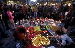 Các nước kêu gọi hợp tác chống khủng bố sau vụ tấn công ở Bỉ
