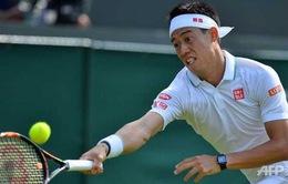 Wimbledon 2016: Ferrer bị loại, Nishikori thắng ngược dòng