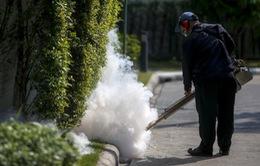 Thái Lan phát hiện thêm các trường hợp nhiễm Zika ở thủ đô