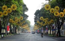 Đường phố Sài Gòn vắng vẻ sáng mùng 1 Tết