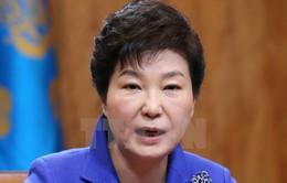 Tổng thống Hàn Quốc công du Iran