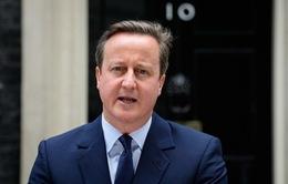 Thủ tướng David Cameron kêu gọi cử tri Anh bỏ phiếu ở lại EU