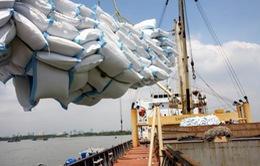 Thái Lan đấu giá 1,11 triệu tấn gạo