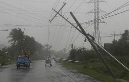 Ngành điện thiệt hại khoảng 100 tỷ đồng do bão số 1