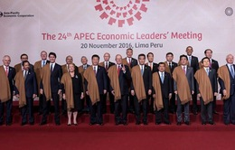 Chủ tịch nước dự các phiên họp toàn thể tại APEC 2016