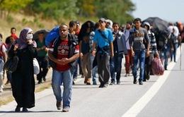 Nhiều trẻ em tị nạn được chuyển đến Bồ Đào Nha từ Hy Lạp