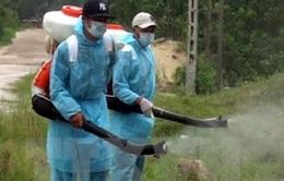 Xử lý nghiêm tiêu cực trong phòng, chống sốt xuất huyết
