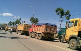 Đà Nẵng cấm xe ben lưu thông trong ngày bầu cử