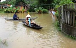 Trung ương Hội Chữ thập đỏ Việt Nam cứu trợ vùng lũ