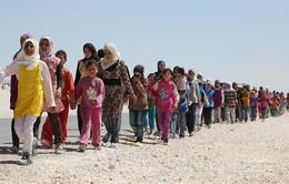 Áo xem xét đơn tị nạn ngay tại khu vực biên giới