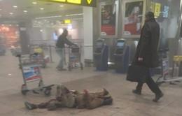 VIDEO: Thời khắc xảy ra vụ nổ bom ở sân bay Brussels (Bỉ)