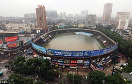 """Trung Quốc: Sân bóng đá biến thành """"bồn tắm khổng lồ"""" vì mưa to kỷ lục"""