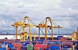 Cảng Đà Nẵng rút ngắn thời gian giao nhận hàng hóa XNK đã thông quan