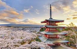 Công ty khởi nghiệp với dịch vụ cho thuê nhà sư tại Nhật Bản