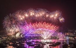 Mãn nhãn với bữa tiệc pháo hoa chào năm mới 2017 tại New Zealand và Australia