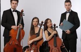 Thưởng thức tiếng đàn điêu luyện của các nghệ sỹ tài năng đến từ Rumani