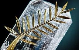 LHP Cannes: Bí mật đằng sau việc lựa chọn phim đoạt Cành Cọ Vàng