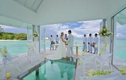 Đám cưới như mơ trên hòn đảo thiên đường