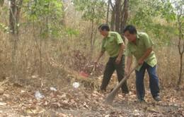 Các tỉnh miền Trung - Tây Nguyên chủ động phòng chống cháy rừng