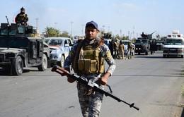 IS tấn công liên hoàn Tikrit (Iraq), 18 người thiệt mạng