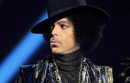 Album của Prince đột ngột tăng hạng