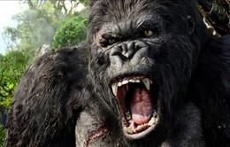 King Kong phần 2 được quay ở nhiều thắng cảnh tại Việt Nam