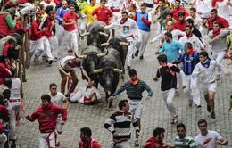 Những lễ hội chen lấn, tranh giành nhau trên thế giới
