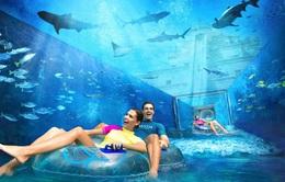 Những khách sạn có hồ bơi ấn tượng nhất hành tinh