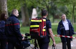 Sét đánh gây thương vong lớn tại Đức và Pháp