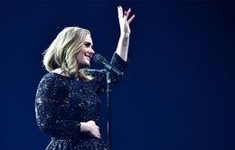 Adele lên kế hoạch sinh con thứ 2