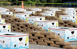 Ecuador bắt giữ lượng ma túy kỷ lục trong năm 2016
