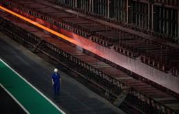 """Thế giới đang """"bội thực"""" thép Trung Quốc"""