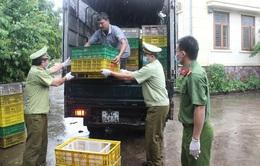 Quảng Ninh: Tiêu hủy 15.000 con gà giống không rõ nguồn gốc