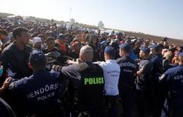 EU phản đối quyết định trưng cầu dân ý về người tị nạn của Hungarry