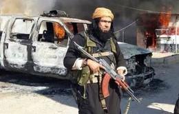 Thủ lĩnh cấp cao của IS tại Iraq bị tiêu diệt
