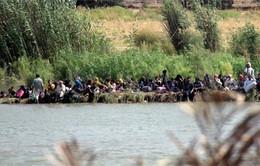 """90.000 thường dân mắc kẹt trong """"thành trì"""" của IS ở Iraq"""