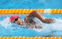 Giải bơi nhóm tuổi ĐNÁ 2016: Phương Trâm giành 9 HCV, phá 3 kỷ lục