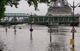"""Hơn 1 tỷ Euro """"trôi"""" theo dòng nước lũ tại Pháp"""