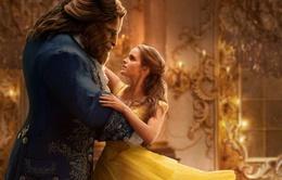 """Emma Watson từ chối vai Lọ Lem để chọn """"Người đẹp và quái vật"""""""
